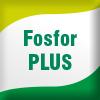 Fosfor PLUS