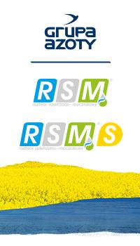 RSM S